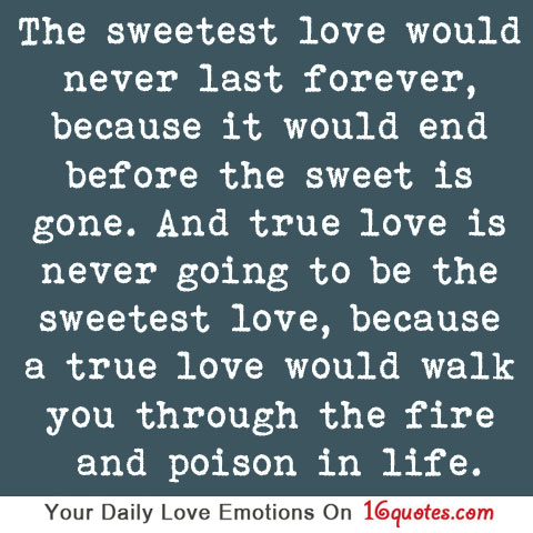 latest love quotes the sweetest love would never last