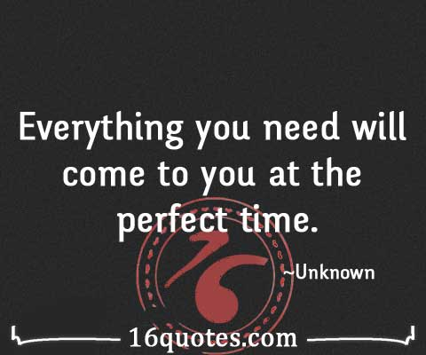 Everything you need quotes