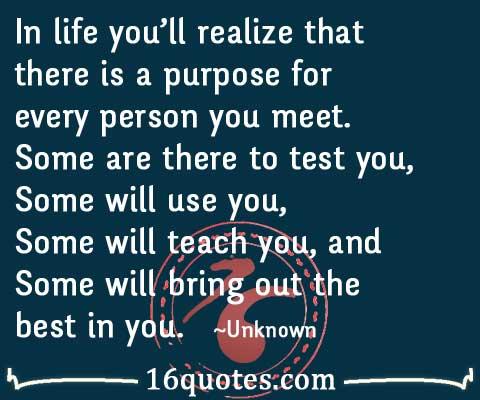 Life Purpose Quotes Stunning In Life You'll Realize That There Is A Purpose For Every Person